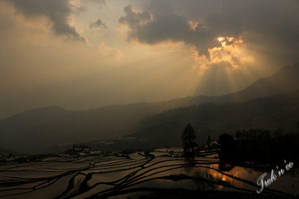 Coucher de soleil sur les rizières