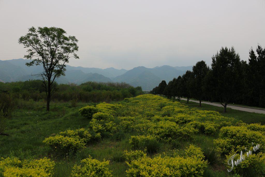 Mausolée Xian_8