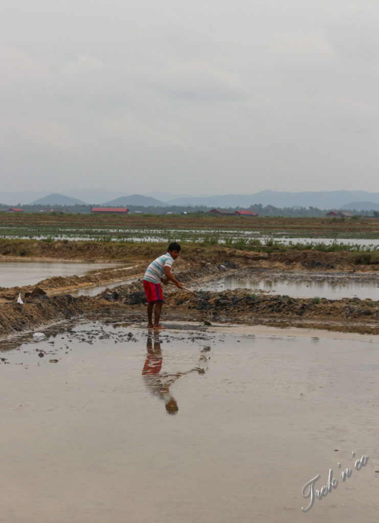 Salines_1_Kampot