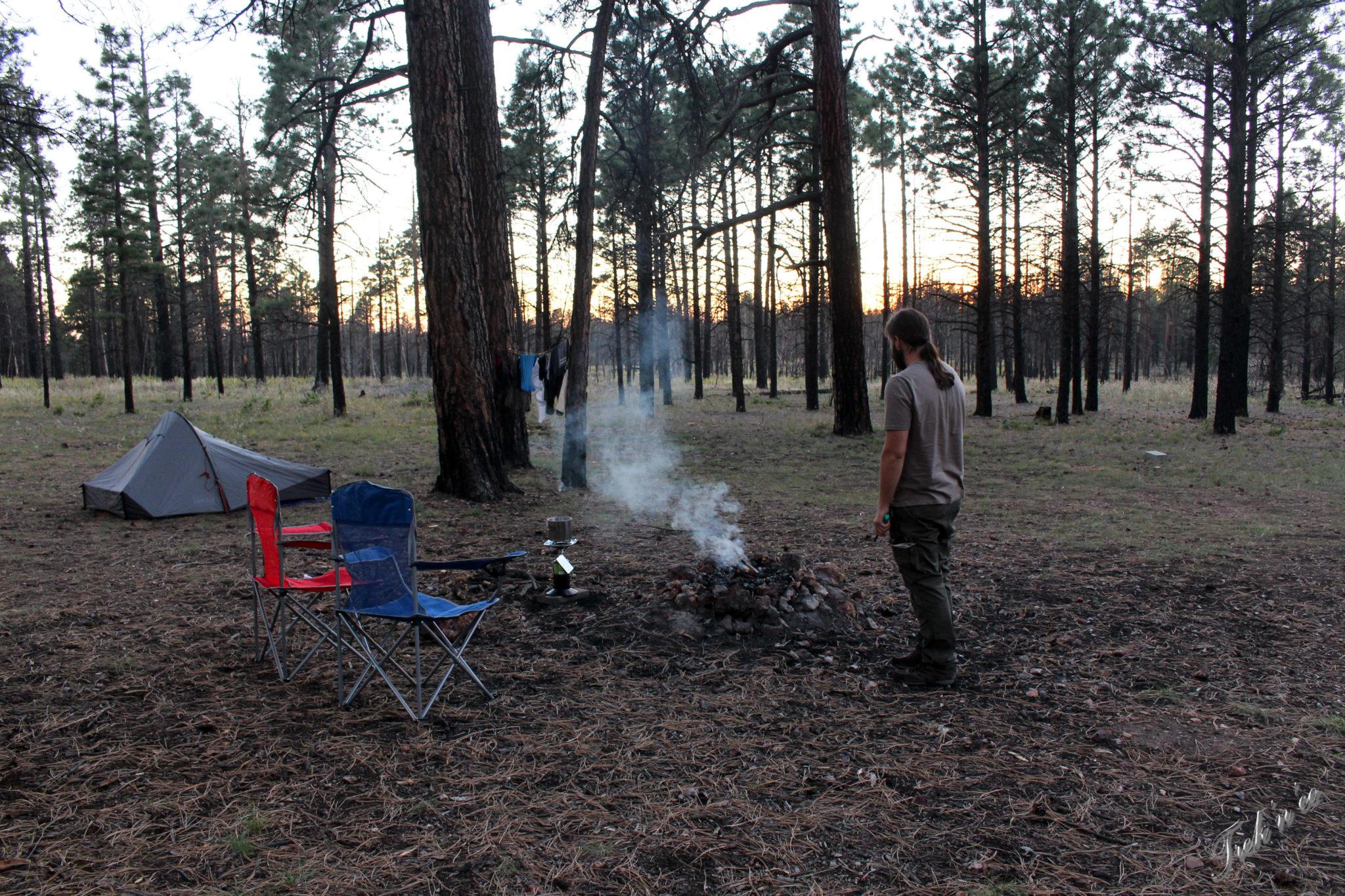 Campement dans la forêt de Kaibab