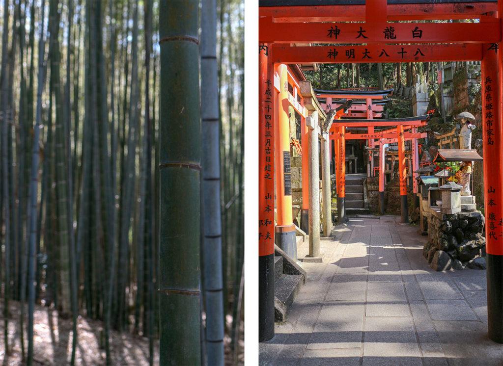 campagne de kyoto
