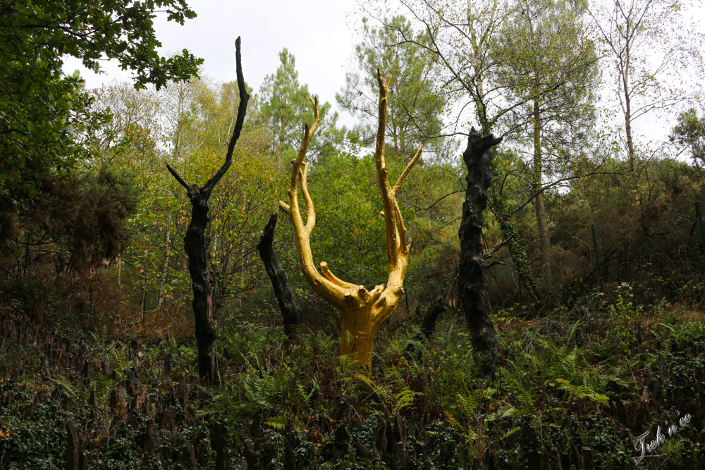 arbre en or broceliande
